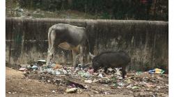 Jhansí - výhled z hotelu Highway přes ulici