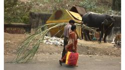 Jhansí - z nákupu s papírovou taškou a cukrovou třtinou