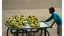 Jhansí - cesta na trh