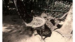 Khajuraho - chrámový komplex - zátiší