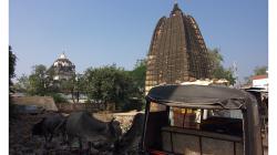 Khajuraho - tyto chrámy se očividně moc turistům neukazují