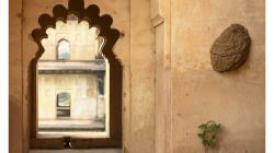 Sršní hnízdo na zdi, pro porovnání s velikostí dveří