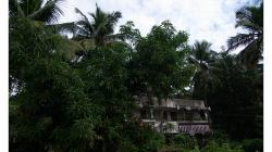 Goa - cestou do Palolem