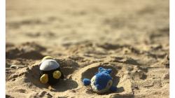 Goa - Palolem Beach - přijeli za námi