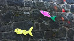 Ryby na s(o)ushi