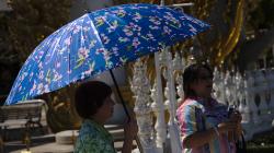 Deštník jako slunečník, velice častý jev