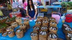 Trh na ulici, a zase ty ryby