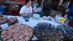 Trh na ulici, prodavačka igelitkama odhání mouchy z masa. Venku je okolo 30 nad nulou