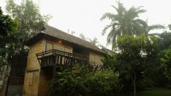 Ubytko v Pai (Golden Hut), hezky v něm chroupali termiti