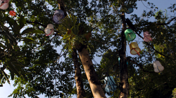 Strom s kyblíkovými lampami