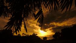 Východ slunce v Bukit Lawang / Bukit Lawang sunrise