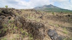 Balijská krajina / Balinese landscape