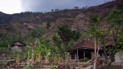 Balijský venkov / Balinese countryside