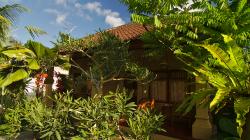 Secret garden, pokoj za 200,- / Secret garden accomodation, room for 100.000 idr