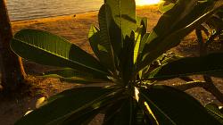 Západ slunce / Sunset