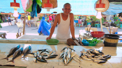 Prodavač ryb / Fish seller
