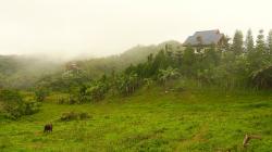 Horské panorama / Mountain panorama