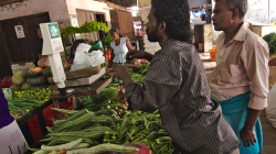 Nákup zeleniny - Vegetables selling