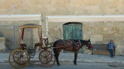 Povoz ve Vallettě - Valletta carriage