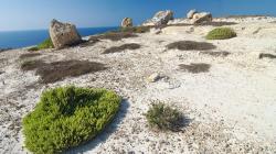 Pěší výlet na Gozu, přes den to nezkoušejte - Hiking trip on Gozo, don't try it during day