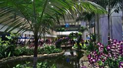 Letiště Singapur / Singapore Airport