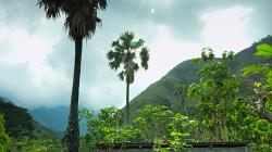 Čistá voda vesničanům/ Clean waterfor villagers