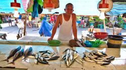 Na trhu / On the market