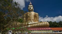 50m Budha / 50m tall Buddha